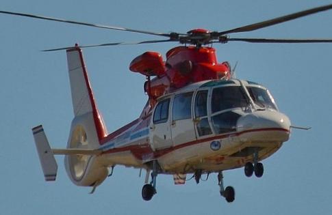 1994 Eurocopter AS 365N2 Dauphin II for Sale in Australia