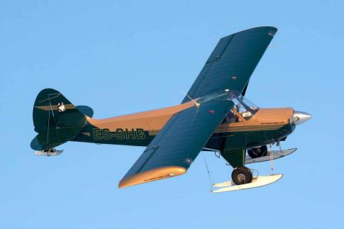 2005 Aviat Aircraft Inc. A-1B Husky for Sale in Rapla, Estonia (EERA)
