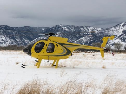 1998 McDonnell Douglas MD-530F for Sale in Nevada, United States (KBVU)