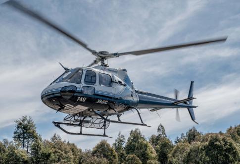 1984 Eurocopter AS 350B2 Ecureuil for Sale in Hobart, TAS, Australia (YMHB)